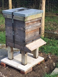 Honey bees at the Old Forge